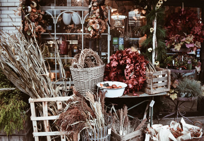 Roxanne's Dried Flowers Pittsburgh